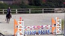 ALLEGRESSE DES TESS  lors de son 1er parcours en compétition (à 5 ans le 07 avril 2015 à AUVERS , pas sortie à 4 ans)