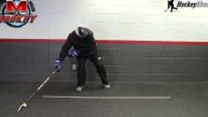 Stickhandling Drills - Reach and Mobility