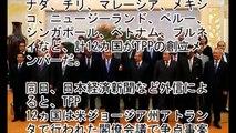 【AIIB崩壊か】韓国人「TPP交渉が大筋合意!日本・アメリカ主導の��