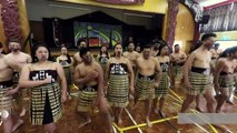 RugbyU: Maoris hacked off at haka exploitation