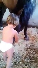 Baby Playing With Horse - Baby Loves Horse / Very Cute and Funny Video / Cute Animals / Ho