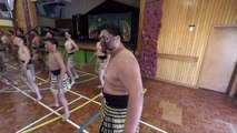Rugby: l'oeil des Maoris sur les Hakas à tout va
