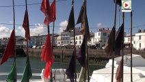 Ile d'Yeu: Un paradis en haute mer - Télé Ile d'Yeu Vendée