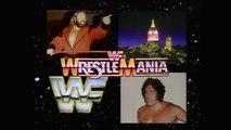WWF Wrestlemania - John Studd Vs. Andre The Giant