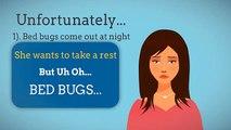 We Clean Bed Bugs - Exterminator of Bed Bugs   Edmonton
