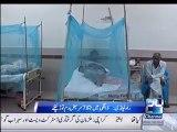 Rawalpindi: number of dengue cases rose to alarming figure of 1950