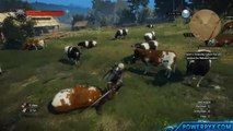 The Witcher 3 Wild Hunt Hearts of Stone Jeu complet Activation Crack (CODEX Key)