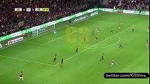 Sneijder Fener Ağlama Remix