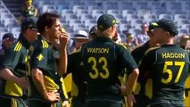 Watch Top Run Outs In Cricket 2015,2014,2013 Online Cricket Match Wickets Free