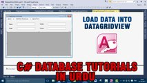 P(1) - C# Access Database Tutorials In Urdu - Load Data In DataGridView Control
