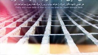 Maulana Tariq Jameel Emotional Tilawat تلاوت