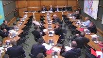 20.10.2015 - Commission du Développement Durable : Audition de Dominique Bureau