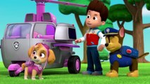 PAW Patrol Pups Save the Parade Clip 3