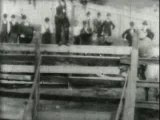 1894 - Bucking Bronco