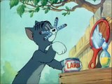 Tom And Jerry Episode 13 The Zoot Cat 1944 FULL SEASON ~ Animated Cartoon | Cart Tom