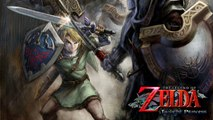 More Zelda Twilight Princess HD Evidence & Upcoming Wii Games on Wii U eShop?