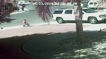 VIDEO: Cat saves Bakersfield boy from dog attack