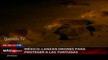 MEXICO LANZAN DRONES PARA PROTEGER A LAS TORTUGAS.