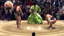 Sumo Makuuchi recap Haru basho