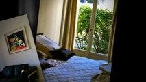 Location Appartement, Paris 15ème (75), 1 600€/mois