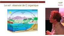 Thomas LERCH - Le rôle des sols urbains dans l'atténuation et l'adaptation au changement climatique