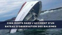 Cinq morts dans l'accident d'un bateau d'observation des baleines