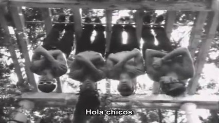 Red Hot Chili Peppers - Funky Monks Documentary [Spanish]