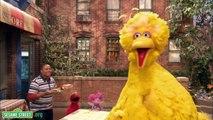 Sesame Street: The Good Birds Club