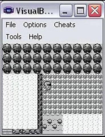 Pokemon 731