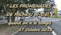 LES PROMENADES DE MICHOU W-D.D. - 27 OCTOBRE 2015 - PAU - LONGUE PROMENADE DANS NOTRE QUARTIER DU BUISSON.