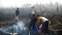 Feux de forêts en Indonésie: un Français accuse l'huile de palme