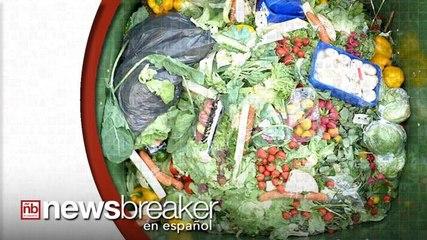 La Comida que Desperdiciamos Está Causando Daños Graves  al Planeta