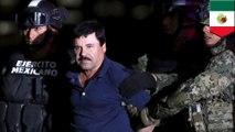 El Chapo captured in Mexican marine raid on Sinaloa Cartel safehouse