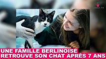 Une famille berlinoise retrouve son chat après 7 ans ! L'histoire dans la minute chat #94