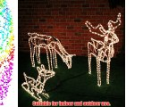 Rope Light Reindeer Family Large - Stag Doe   Baby - With Warm White LED Lights - Indoor/Outdoor