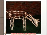 Large Animated Rope Light Reindeer Family - Stag Doe Baby - With Warm White LED Lights - Indoor/Outdoor