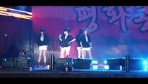 100619 T-ara 2010 평화콘서트 in 임진각 티아라 - 너 때문에 미쳐