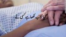 Kya Khoob Likha hey Kisi Ne - Bakhsh Deta hey Khuda Un Ko - Poetry