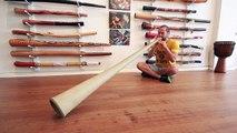 Hemp Didge Key of E (#1630) at Didgeridoo Breath