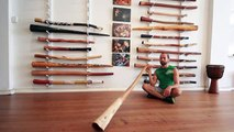 Indigiwood Didge Key of Bb (#2268) at Didgeridoo Breath