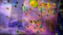O Universo - Ciência, Realidade ou Ficção - Canal História