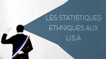 Les statistiques ethniques aux U.S.A - DESINTOX - 03/11/2015