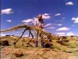Documental Leones vs Leopardos animales salvajes   documentales completos en español