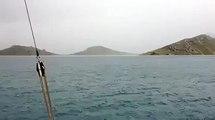 Un coup de foudre en pleine mer
