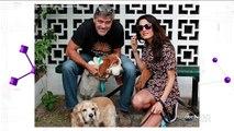 George Clooney Adopts A Dog, Dan Aykroyd Praises Ghostbusters Reboot And More in Pop New