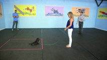 Lucky Dog - Therapy Dog Test