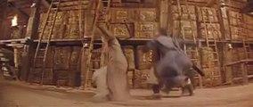 Jet Li(李連杰) vs Yen Shi Kwan(任世官) Last Duel Scene (Hong Kong movie 1991) #3