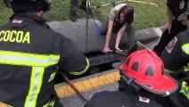 Trois pitbulls sont pris au piège dans un collecteur d'eau de pluie... Les pompiers les ont sauvés héroïquement !