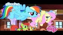 My little pony, l'amicizia è magica - 040 - L'ultimo raduno
