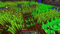 EL CERDO VOLADOR!! #DIMINUTOS3 | Episodio 23 | Minecraft Supervivencia | Willyrex y sTaXx